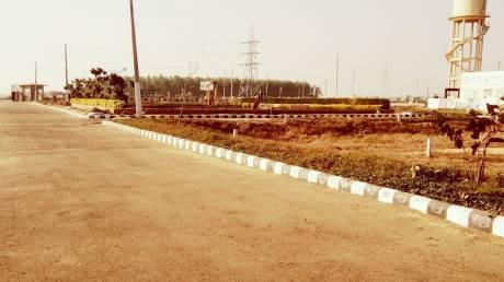 1125 sqft, Plot in Builder rose avenu Dera Bassi, Chandigarh at Rs. 10.7000 Lacs