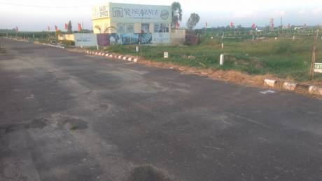 630 sqft, Plot in Builder rose avenue Dera Bassi, Chandigarh at Rs. 5.9920 Lacs