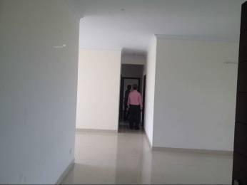 1275 sqft, 2 bhk Apartment in Rohtas Plumeria Gomti Nagar, Lucknow at Rs. 65.0000 Lacs