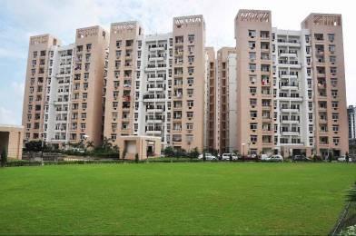 1275 sqft, 2 bhk Apartment in Rohtas Plumeria Gomti Nagar, Lucknow at Rs. 66.0000 Lacs