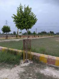 1000 sqft, Plot in Builder Tirupati Residency DEVA ROAD NEAR TATA MOTORS, Lucknow at Rs. 7.4000 Lacs