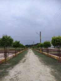 1350 sqft, Plot in Builder Tirupati Residency i Deva Road, Lucknow at Rs. 10.0575 Lacs