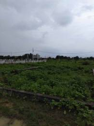 1300 sqft, Plot in Builder gulmohar green Gomti Nagar Extension, Lucknow at Rs. 20.1500 Lacs