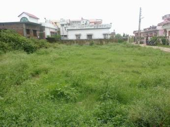 200 sqft, Plot in Builder Uniyal Properties Jogiwala, Dehradun at Rs. 46.0000 Lacs