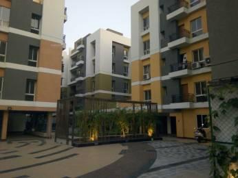 1308 sqft, 3 bhk Apartment in Builder ccitrus covvve Kamalgazi, Kolkata at Rs. 16000