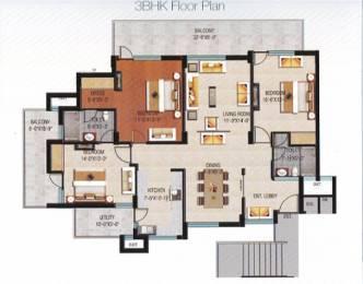1800 sqft, 3 bhk Apartment in Builder Trishla city Patiala Road Zirakpur, Chandigarh at Rs. 14000