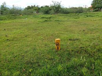 1875 sqft, Plot in Builder Project Potheri, Chennai at Rs. 17.8125 Lacs