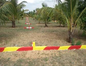 1100 sqft, Plot in Builder Project Chengalpattu, Chennai at Rs. 4.6750 Lacs