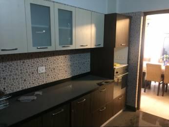 3155 sqft, 3 bhk Apartment in Prestige Benson Court Frazer Town, Bangalore at Rs. 85000