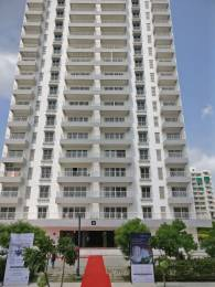2211 sqft, 3 bhk Apartment in Godrej Garden City Pinecrest Near Nirma University On SG Highway, Ahmedabad at Rs. 89.0000 Lacs