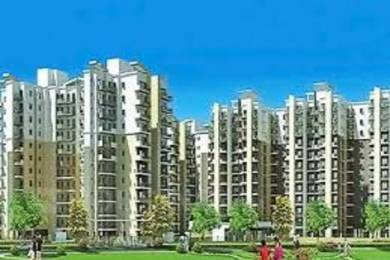 1675 sqft, 3 bhk Apartment in Revanta Heights Chhawla, Delhi at Rs. 52.2500 Lacs