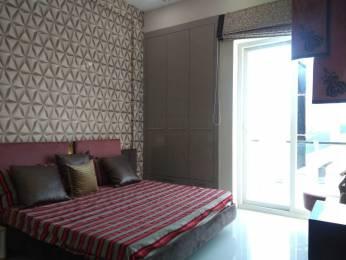 1845 sqft, 3 bhk Apartment in Builder Motia royal city Zirakpur punjab, Chandigarh at Rs. 60.0000 Lacs