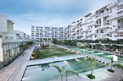 1986 sqft, 3 bhk Apartment in Rohan Mithila Viman Nagar, Pune at Rs. 45000