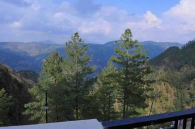 615 sqft, 1 bhk Apartment in Builder sandwoods windsor suites Bharari, Shimla at Rs. 31.7500 Lacs