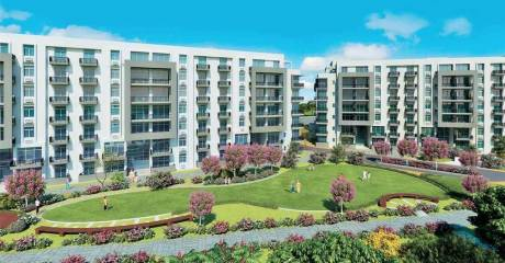 1233 sqft, 2 bhk Apartment in Ireo Rise Sector 99 Mohali, Mohali at Rs. 47.2765 Lacs