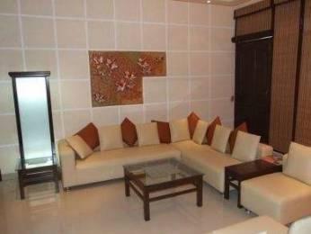 1800 sqft, 2 bhk BuilderFloor in Builder Project Panchkula Sec 7, Chandigarh at Rs. 18000
