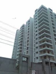 1299 sqft, 2 bhk Apartment in MSR RR Signature Jakkur, Bangalore at Rs. 80.5380 Lacs
