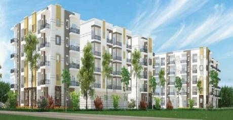 1675 sqft, 3 bhk Apartment in Sraddha White Cliff Sai Baba Ashram, Bangalore at Rs. 73.7000 Lacs