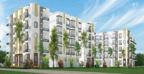 1215 sqft, 2 bhk Apartment in Sraddha White Cliff Sai Baba Ashram, Bangalore at Rs. 55.6600 Lacs