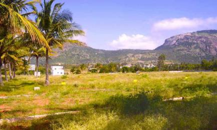 1500 sqft, Plot in Builder DEVELOPER GROUP NORTH GARDENS Nandi Hills, Bangalore at Rs. 30.0600 Lacs