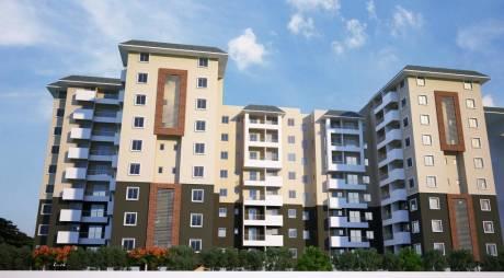 1302 sqft, 3 bhk Apartment in Concorde Spring Meadows Jalahalli, Bangalore at Rs. 66.2118 Lacs