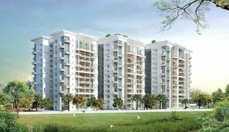 2565 sqft, 3 bhk Apartment in The Address The Five Summits Whitefield Hope Farm Junction, Bangalore at Rs. 1.8261 Cr