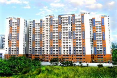 1342 sqft, 3 bhk Apartment in NCC Nagarjun Meadows II Yelahanka, Bangalore at Rs. 77.6152 Lacs