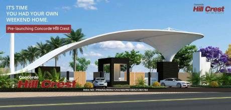 1200 sqft, Plot in Concorde Hill Crest Chikballapur, Bangalore at Rs. 10.0000 Lacs