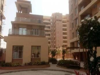 870 sqft, 2 bhk Apartment in G K Armada Wakad, Pune at Rs. 18000