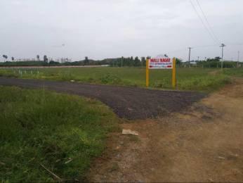 800 sqft, Plot in Yume Homes and Lands Thavesh Avenue Kelambakkam, Chennai at Rs. 13.6000 Lacs