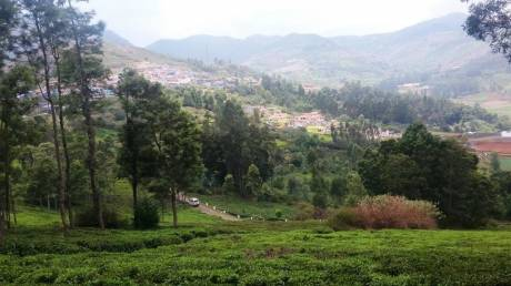 2180 sqft, Plot in Builder Amrutha garden Ooty Thummanatty Kappachi Road, Ooty at Rs. 6.2500 Lacs