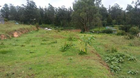 2180 sqft, Plot in Builder Holiday home Property Fern Hill, Ooty at Rs. 16.2500 Lacs