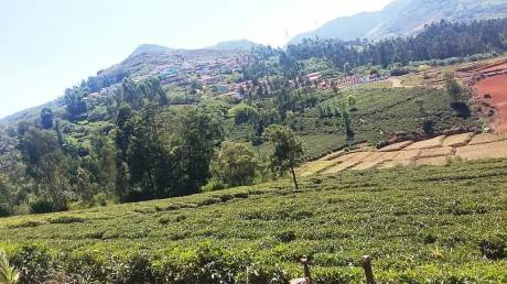 1308 sqft, Plot in Builder Amrutha garden Ooty Thummanatty Kappachi Road, Ooty at Rs. 5.0000 Lacs