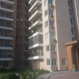 1530 sqft, 3 bhk BuilderFloor in Builder HERO HOMES Sidhwan Canal Road, Ludhiana at Rs. 62.0000 Lacs