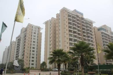 1065 sqft, 2 bhk Apartment in Omaxe Panache Homes Galaxy Dad Village, Ludhiana at Rs. 48.5000 Lacs