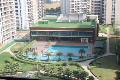 950 sqft, 1 bhk Apartment in Builder Omaxe Royal Street Sector Satara Ludhiana Dad Village, Ludhiana at Rs. 69.2705 Lacs