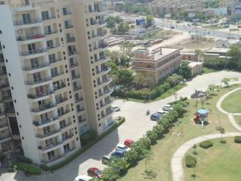 1800 sqft, 3 bhk Apartment in MVL Coral Sector 18 Bhiwadi, Bhiwadi at Rs. 38.0000 Lacs