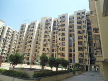 1235 sqft, 2 bhk Apartment in Cosmos Palm Apartment Sector 18 Bhiwadi, Bhiwadi at Rs. 25.0000 Lacs