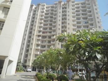 1250 sqft, 2 bhk Apartment in Avalon Gardens Sector 22 Bhiwadi, Bhiwadi at Rs. 29.7000 Lacs