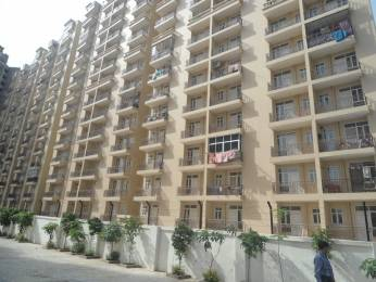 625 sqft, 1 bhk Apartment in Nimai Greens Sector 22 Bhiwadi, Bhiwadi at Rs. 18.0000 Lacs