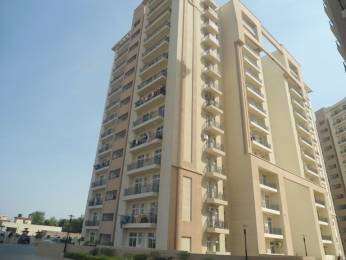 1234 sqft, 2 bhk Apartment in Nimai Greens Sector 22 Bhiwadi, Bhiwadi at Rs. 30.0000 Lacs