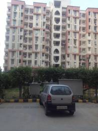1150 sqft, 3 bhk Apartment in Avalon Residency Phase I Sector 32 Bhiwadi, Bhiwadi at Rs. 22.5000 Lacs