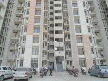 950 sqft, 2 bhk Apartment in Avalon Residency Phase II Sector 32 Bhiwadi, Bhiwadi at Rs. 22.0000 Lacs
