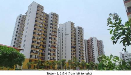 1261 sqft, 2 bhk Apartment in Vipul Gardens Sector 1 Dharuhera, Dharuhera at Rs. 32.0000 Lacs