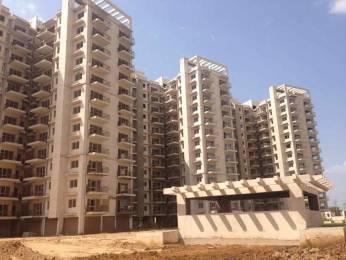 1300 sqft, 2 bhk Apartment in Avalon Rangoli Sector 24 Dharuhera, Dharuhera at Rs. 28.0000 Lacs