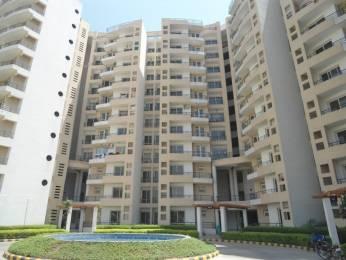 1350 sqft, 2 bhk Apartment in MVL Coral Sector 18 Bhiwadi, Bhiwadi at Rs. 33.0000 Lacs