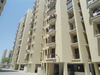 1235 sqft, 2 bhk Apartment in Cosmos Palm Apartment Sector 18 Bhiwadi, Bhiwadi at Rs. 26.0000 Lacs