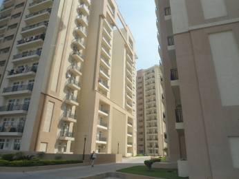 1370 sqft, 2 bhk Apartment in Nimai Greens Sector 22 Bhiwadi, Bhiwadi at Rs. 32.5000 Lacs