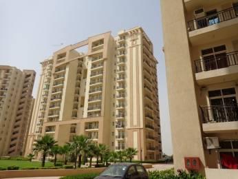 1850 sqft, 3 bhk Apartment in Nimai Greens Sector 22 Bhiwadi, Bhiwadi at Rs. 47.0000 Lacs