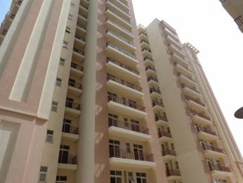 1620 sqft, 3 bhk Apartment in Nimai Greens Sector 22 Bhiwadi, Bhiwadi at Rs. 43.0000 Lacs